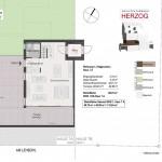 Haus-7-A_Grundriss-EG_WHG